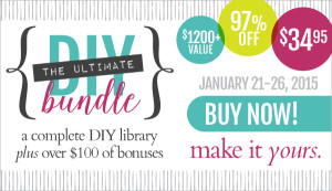 The Ultimate DIY Bundle - Less Than 5 Days Left!