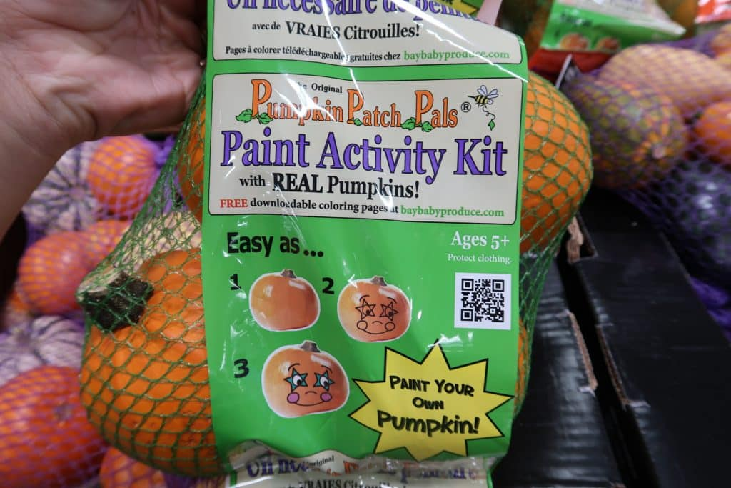 cute pumpkins from bjs wholesale club