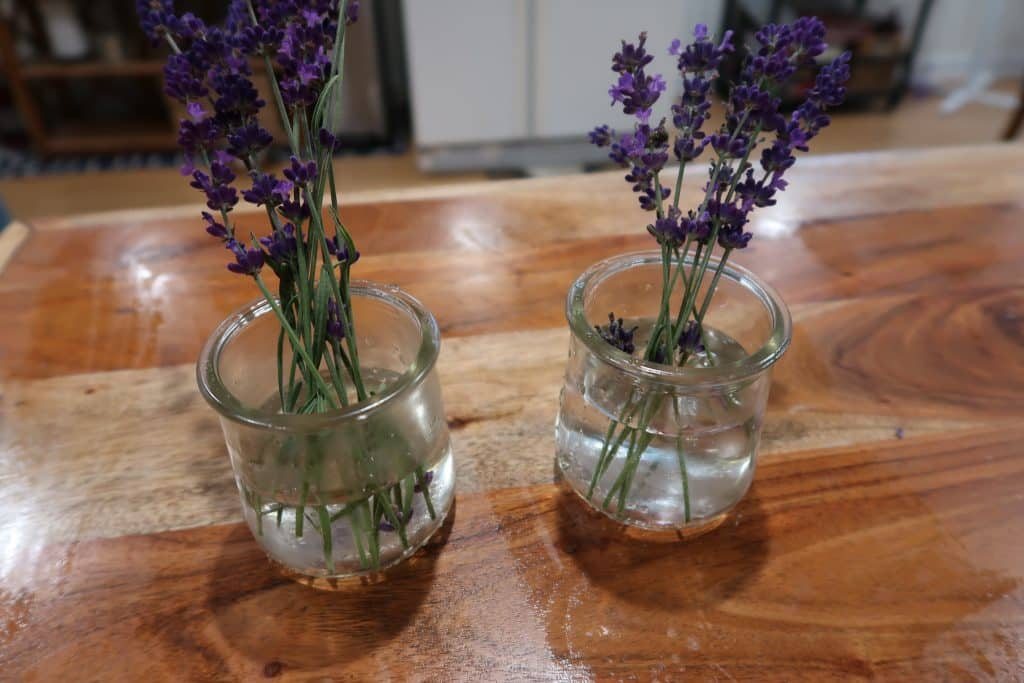 repurposing oui by yoplait yogurt jars