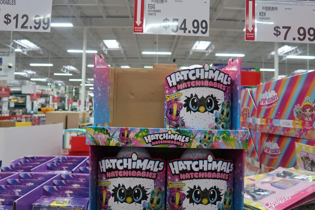 hatchimals-toy-bjs-wholesale