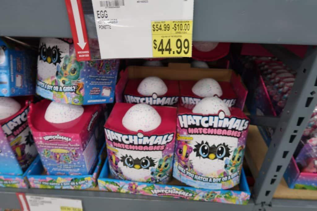 Hatchimals at BJs on sale