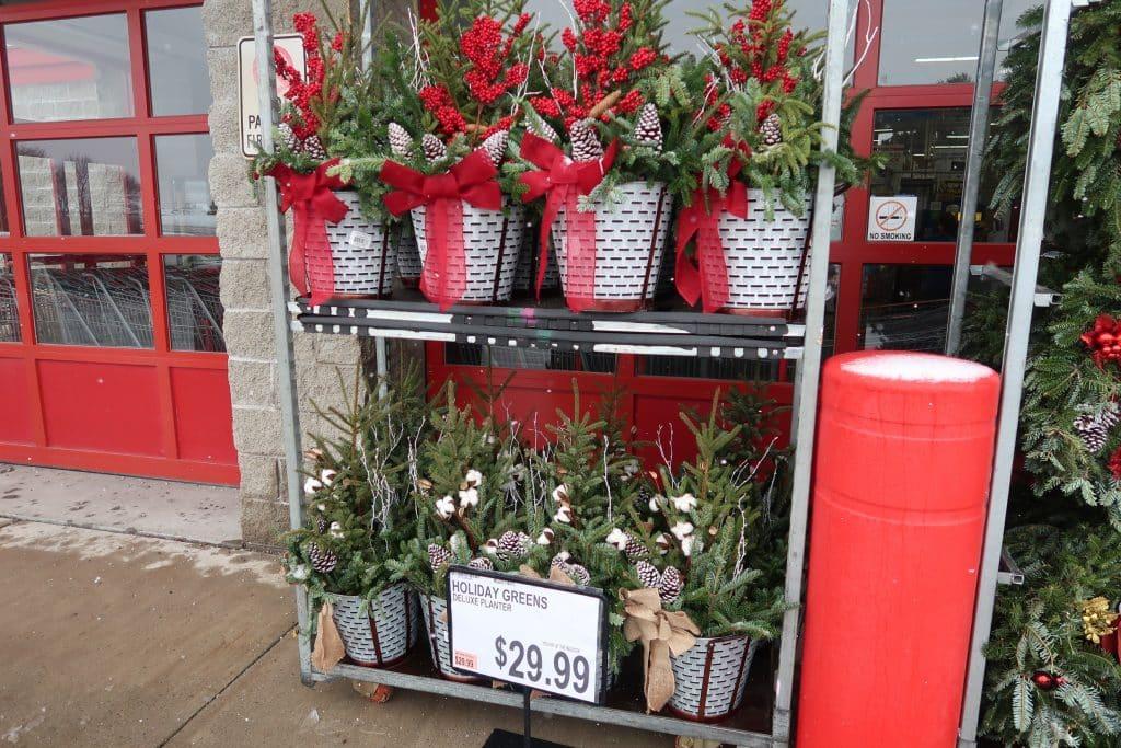 pine wreaths at BJs wholesale club