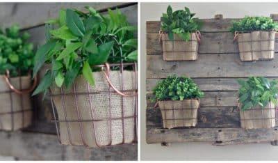 farmhouse succulent planters