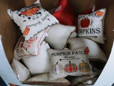 Berkley Jensen Assorted Harvest Pillows